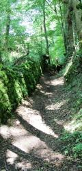Cheminsermur2